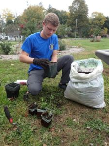 Senior Carrick Conway takes care of plants that will be used in Slayton Arboretum's hillside restoration. (Laurie Rosenberg/Courtesy)