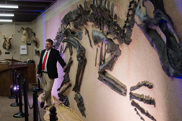 Professor of Biology Anthony Swineherd stands with Linda the edmonotsaurus, a nearly complete dinosaur skeleton excavated with the help of Hillsdale College students in SouthDakota, that was donated to the college's Daniel M. Fisk Museum of Natural History in the Strosacker Science Center. Madeline Fry | Collegian
